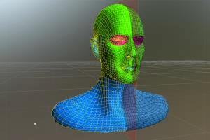 Portfolio for Retopologize a high-polygon Model