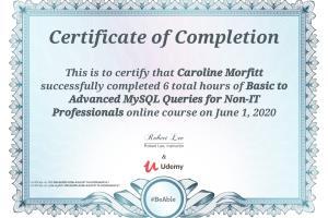Portfolio for mySQL