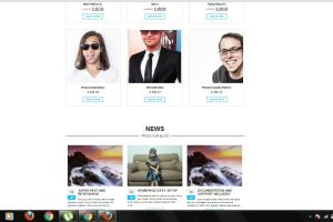 Portfolio for I will install WordPress themes