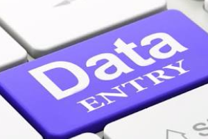 Portfolio for Data Enrty Clerk