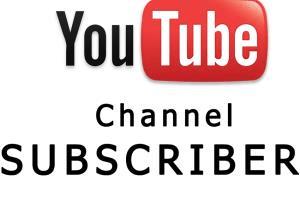 Portfolio for Provide You YouTube Subscribers/Views...