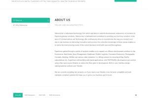 Portfolio for Laravel + VueJs Developer
