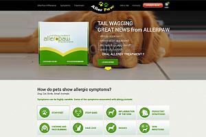 Portfolio for Web Design / Banner Design