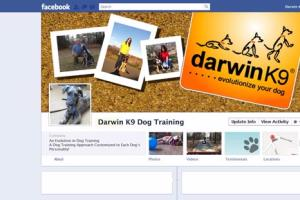 Portfolio for Facebook Design