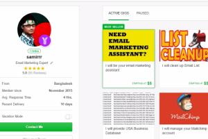 Portfolio for Email Marketing Assistant