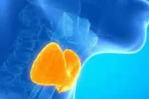Portfolio for Health, Medical & Wellness Related Topic