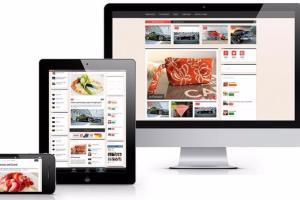 Portfolio for Wordpress Web Site Design