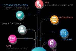 Portfolio for NetSuite Consultants