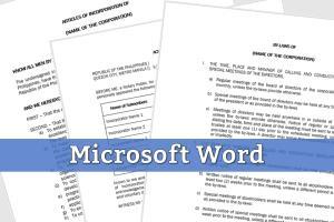 Portfolio for Business-Ready Word Document