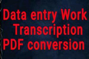 Portfolio for I will convert pdf to word