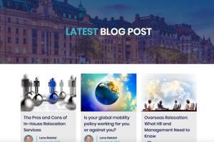 Portfolio for SEO/SEM/SMO & CRM/ERP & Adwords Expert