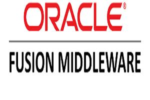 Portfolio for Middleware Administration