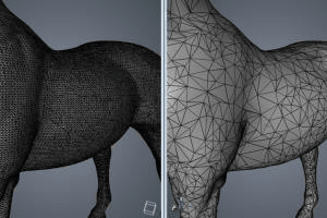 Portfolio for 3D Vision, Reconstruction, and Imaging