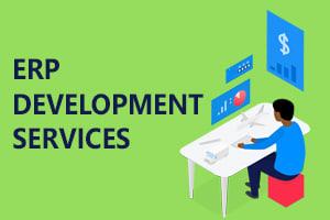 Portfolio for Enterprise Services - ERP, ERPnext