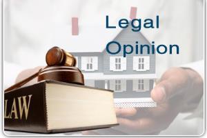 Portfolio for Legal Advisor