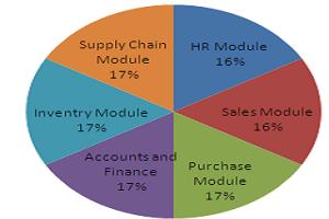 Portfolio for Enterprise Resource Planning (ERP)