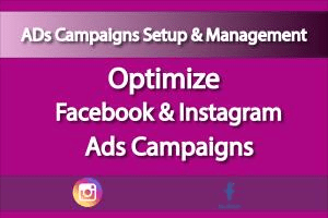 Portfolio for Setup & Manage Facbook Ad Campaigns