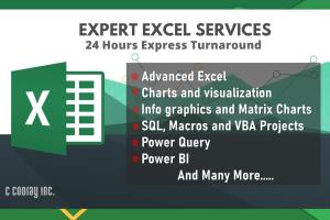 Portfolio for Expert Excel Services