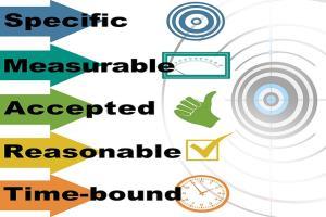 Portfolio for Adsense approval guaranteed niche site