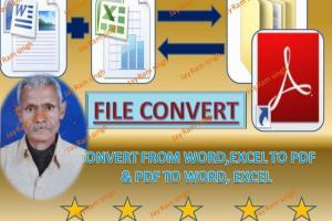 Portfolio for Convert Scan/Image text/PDF to Word