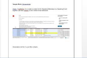 Portfolio for Lead Generator and Aspiring VA