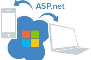 Portfolio for .NET PROGRAMMING