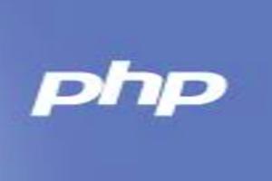 Portfolio for Professional Full Stack WEB Developer