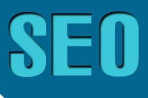 Portfolio for Can Become Your Successful SEO Agency