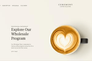 Portfolio for ♕ Squarespace | Shopify | Lightspeed ♕