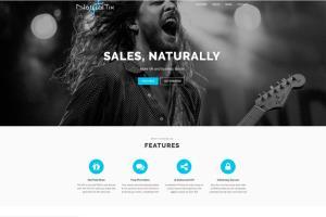 Portfolio for Web App, Website Developer & Marketing