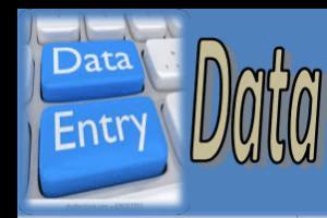 Portfolio for Data entry, copy paste, Pdf convert.