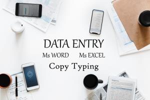 Portfolio for Data Entry