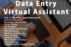 Portfolio for Data Entry - Virtual Assistant