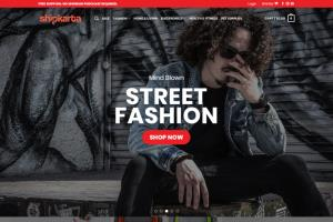 Portfolio for Wordpress Design and E-commerce