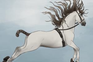 Portfolio for Digital art/Illustration