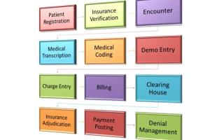 Portfolio for Virtual Asst_Medical billing/coding