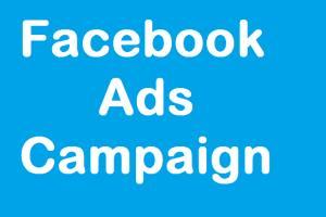 Portfolio for Skilled Digital Marketing Expert