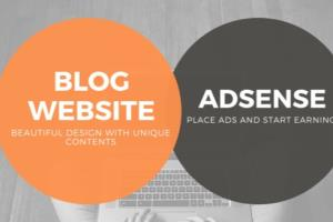 Portfolio for I will create adsense approved website