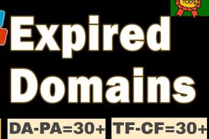 Portfolio for Expired domain research for pbn backlink