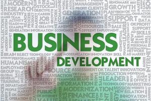 Portfolio for For B2B Sales Function