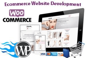 Portfolio for I will create wordpress website design