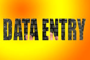 Portfolio for Data Entry and Typing Work