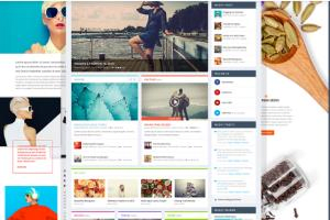 Portfolio for wordpress/Divi Theme/Ecommerce/