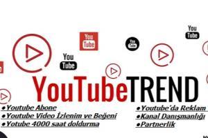 Portfolio for youtube video likes