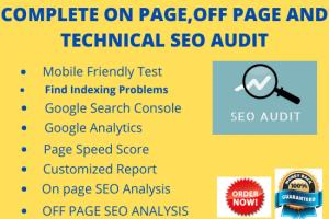 Portfolio for SEO Audit /SEO auditing/ SEO Report