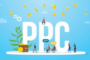 Portfolio for Pay Per Click ( PPC )