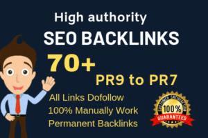 Portfolio for seo backlinks