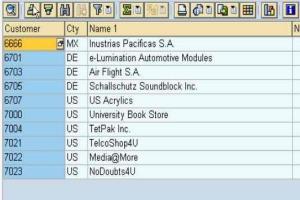 Portfolio for SAP ABAP Technical Consultant
