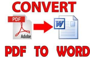 Portfolio for I will convert PDF to WORD Document
