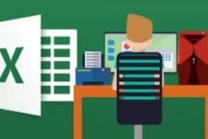 Portfolio for Excel Data Entry | Formatting | Merge